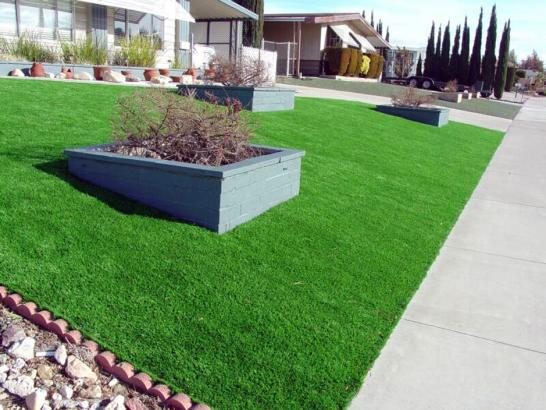 Artificial Grass Photos: How To Install Artificial Grass Sisquoc, California Garden Ideas, Front Yard Landscaping