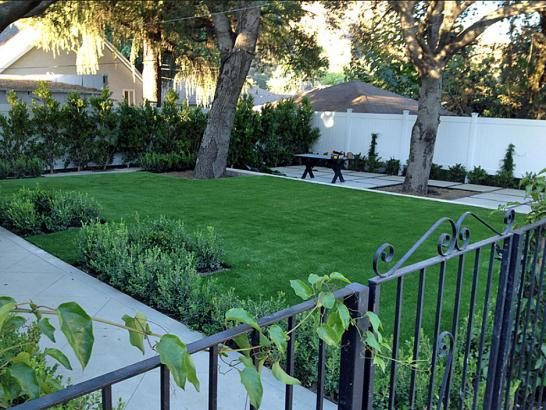 Artificial Grass Photos: Installing Artificial Grass Buellton, California Garden Ideas, Front Yard Landscaping