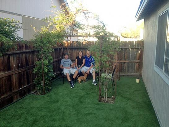 Artificial Grass Photos: Lawn Services Cuyama, California Backyard Deck Ideas, Grass for Dogs