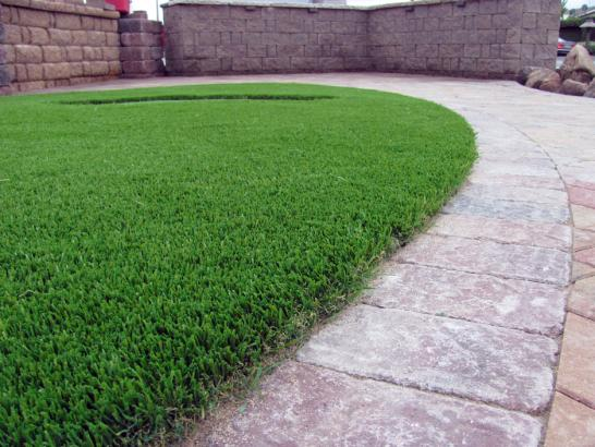 Artificial Grass Photos: Outdoor Carpet Carpinteria, California Lawns, Front Yard Landscaping Ideas