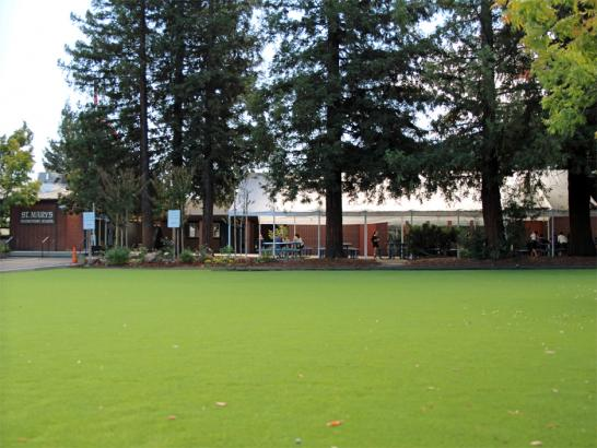 Artificial Grass Photos: Outdoor Carpet Casmalia, California Lacrosse Playground, Recreational Areas