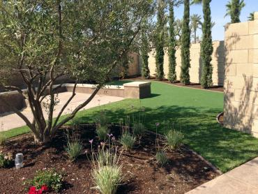 Artificial Grass Photos: Plastic Grass Goleta, California Landscaping Business, Backyard