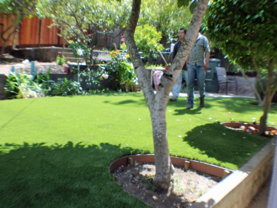 Artificial Grass Photos: Plastic Grass Guadalupe, California Lawns, Backyards