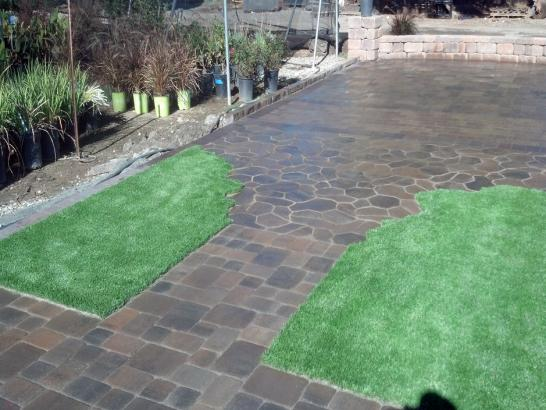 Artificial Grass Photos: Plastic Grass Lompoc, California Landscaping, Backyard Landscape Ideas