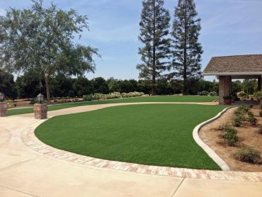 Artificial Grass Photos: Plastic Grass Santa Barbara, California Landscape Ideas, Front Yard Design