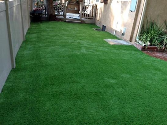 Artificial Grass Photos: Plastic Grass Santa Maria, California Paver Patio, Backyard