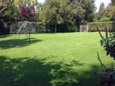 Artificial Grass Photos: Plastic Grass Solvang, California Backyard Deck Ideas, Beautiful Backyards