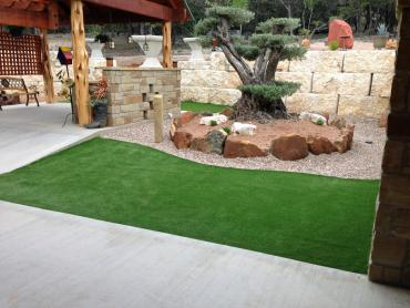 Artificial Grass Photos: Plastic Grass Toro Canyon, California Lawn And Landscape, Backyard Landscaping Ideas