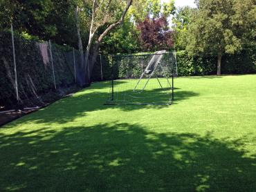 Artificial Grass Photos: Synthetic Grass Ballard, California Red Turf, Backyard Landscaping Ideas