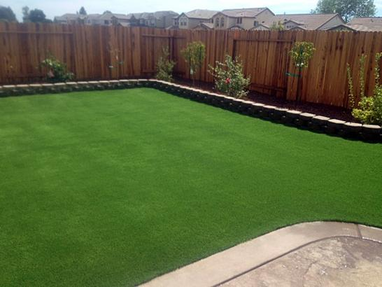 Artificial Grass Photos: Synthetic Grass Santa Maria, California City Landscape, Backyard Makeover