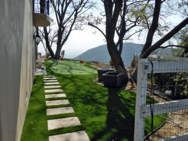 Artificial Grass Photos: Synthetic Grass Sisquoc, California Putting Green, Backyard