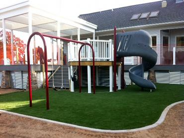 Artificial Grass Photos: Synthetic Grass Toro Canyon, California Design Ideas, Backyards