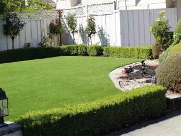 Artificial Grass Photos: Synthetic Lawn Mission Canyon, California Landscape Ideas, Small Front Yard Landscaping