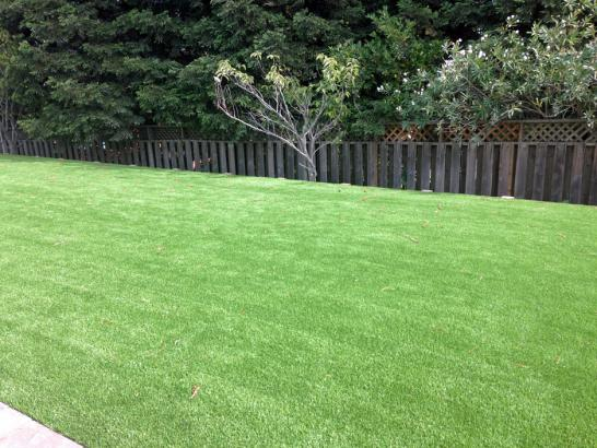 Artificial Grass Photos: Synthetic Lawn Montecito, California Lawn And Landscape, Backyard Landscaping