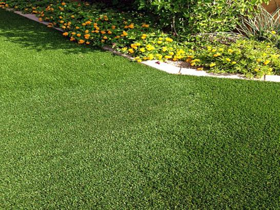 Artificial Grass Photos: Synthetic Lawn Orcutt, California Home And Garden, Front Yard Landscaping
