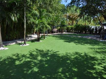 Artificial Grass Photos: Synthetic Lawn Sisquoc, California Garden Ideas, Commercial Landscape