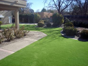 Artificial Grass Photos: Synthetic Lawn Summerland, California Paver Patio, Landscaping Ideas For Front Yard