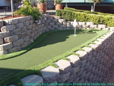 Synthetic Lawn Toro Canyon, California How To Build A Putting Green, Backyard Landscaping Ideas artificial grass