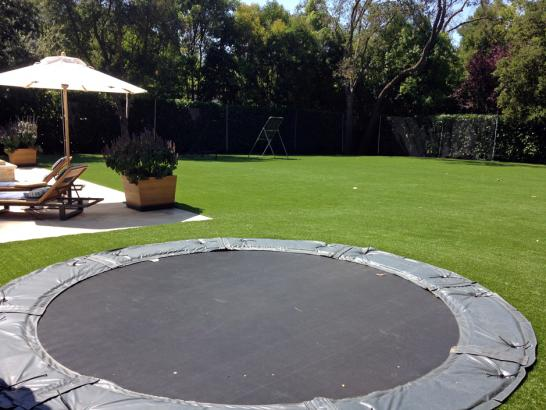 Artificial Grass Photos: Synthetic Turf Carpinteria, California City Landscape, Backyard Landscape Ideas