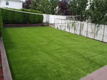 Synthetic Turf Mission Hills, California Home And Garden, Backyards artificial grass