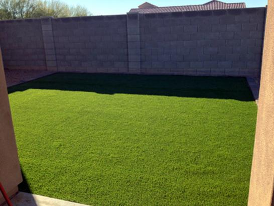 Artificial Grass Photos: Synthetic Turf Orcutt, California Lawn And Garden, Backyard Landscaping Ideas