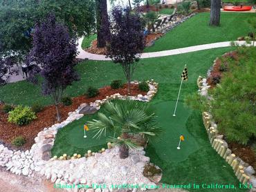Synthetic Turf Santa Barbara, California Best Indoor Putting Green, Backyard Landscape Ideas artificial grass