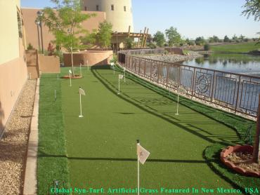Artificial Grass Photos: Synthetic Turf Summerland, California Backyard Deck Ideas, Backyard Makeover
