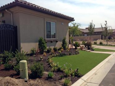 Artificial Grass Photos: Synthetic Turf Supplier Buellton, California City Landscape, Front Yard Ideas