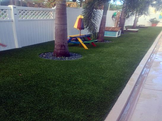 Artificial Grass Photos: Synthetic Turf Supplier Garey, California Landscaping, Backyard Landscaping