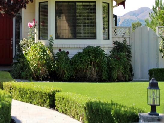 Artificial Grass Photos: Synthetic Turf Supplier Vandenberg Village, California Rooftop, Small Front Yard Landscaping