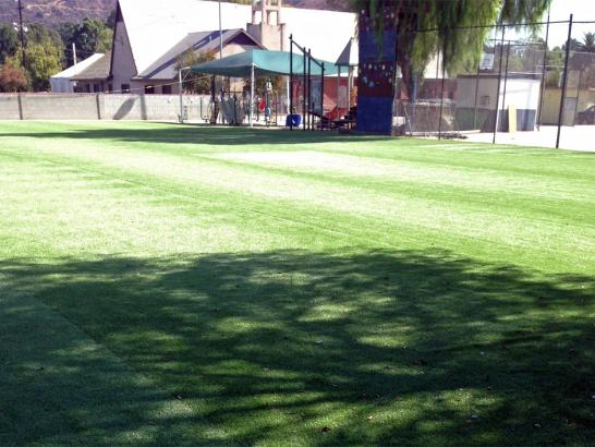 Artificial Grass Photos: Turf Grass Buellton, California Landscape Photos, Recreational Areas