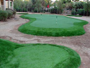 Turf Grass Carpinteria, California Putting Greens, Backyard Garden Ideas artificial grass