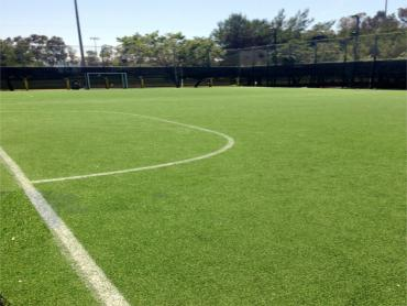 Artificial Grass Photos: Turf Grass Garey, California Red Turf
