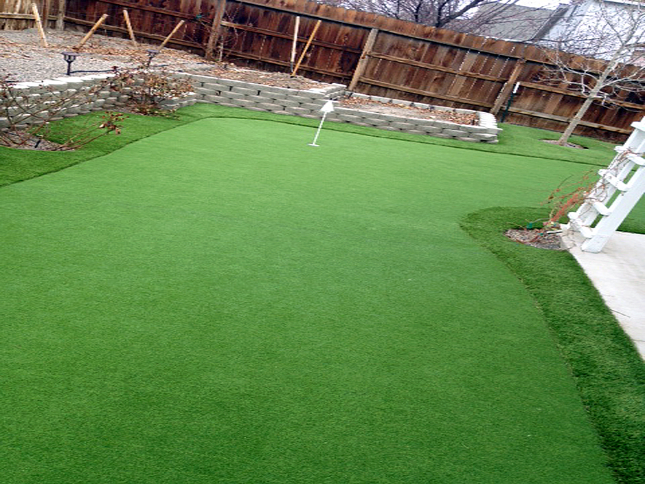 Fake Turf Ballard California Roof Top
